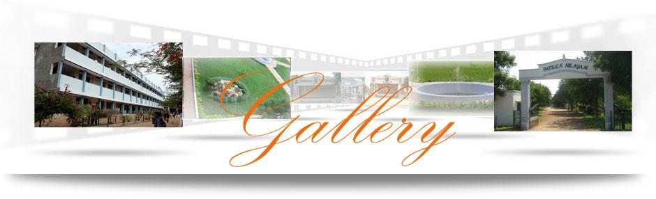 School Photo Gallery Banner